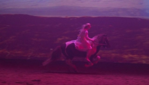 Fakasel Horse Park