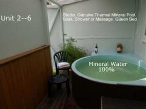 Lakefront Motor Lodge Thermal Spa Taupo