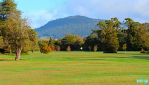 Motutara Golf Course