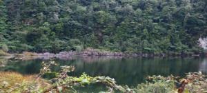 Lake Rotoehu