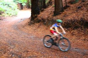 Biking in Whakarewarewa Forest