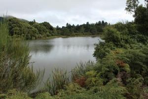 Lake Ngahewa