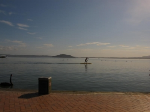 Paddle Boarding on Lake Rotorua