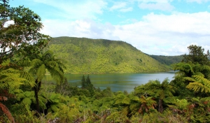 The Green Lake (Lake Rerewhakaaitu)