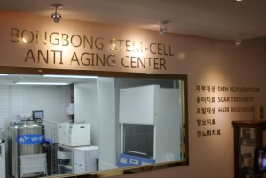 Stem cell floor