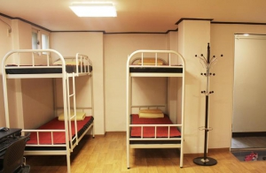 New Room Bunk Beds
