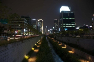 Night View of City Hall