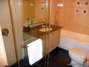 Shower room and bath tub