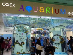 Aquarium inside Coex Mall