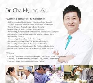 Wannabe Plastic Surgery Korea