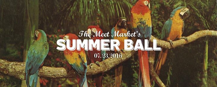 The Meet Market's Summer Ball 2016