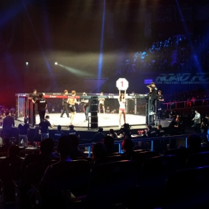 MMA figthing in Seoul