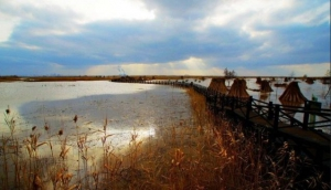 Chongming Island-the Third Largest Island in China
