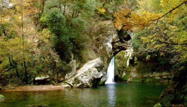 Riserva Naturale Orientata Bosco di Malabotta