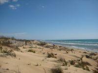 dunes by Iris Marischi