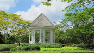 Singapore Botanic & National Orchid Garden