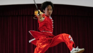 Sino Wushu