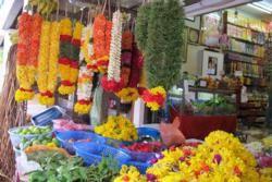 Flower Garlands Little India Singapore