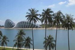 Gardens by the Bay, view from Singapore Flyer