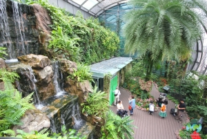 Butterfly Garden- Changi Airport