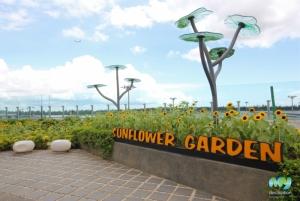 Cactus Garden- Changi Airport