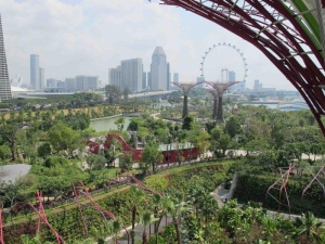 CBD view from Gardens by the Bay