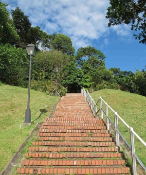 Fort Canning Park-Stairs to Heaven