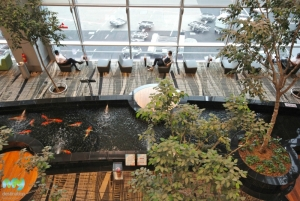 Koi Pond- Changi Airport