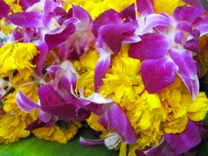 Marigolds and Orchids