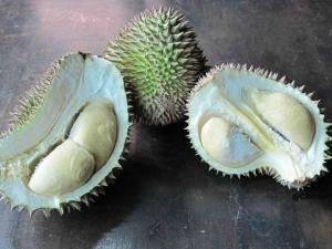 Open Durian Fruits