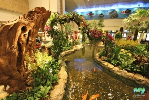Orchid Garden- Changi Airport