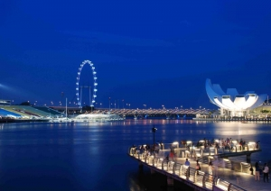 Singapore Flyer and Science Art Museum