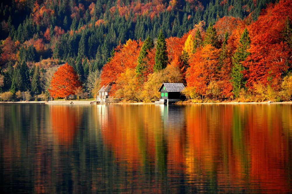Lake Bohinj (Credit: www.slovenia.info, Author: Dunja Wedam)