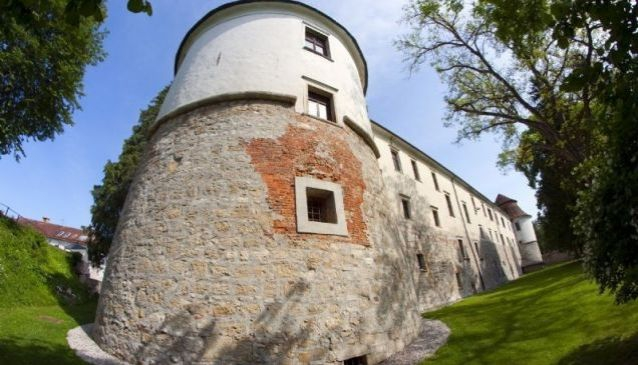 History and Culture at Brezice Castle