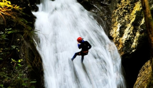 Adrenaline-Check