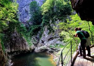Velika dolina lake, Author: Borut Lozej