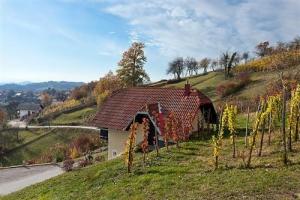 Krivic Vineyard Cottage