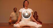 Videos - Wellness