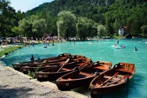 Colni na Blejskem jezeru; S:Slovenia.info; A:Sava