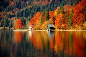 Jesen v Bohinju; S: Slovenia.info; A: D. Wedam