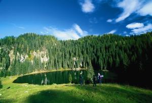 Planina nad Bohinjem S: Slovenia.info A: B.Kladnik