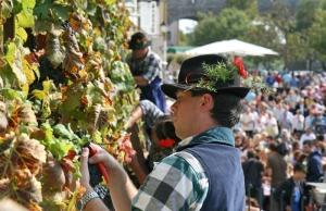 The Old Vine Festival S:Slovenia.info A:Navdih.net