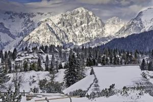 Velika planina; Author: Jure Prusnik