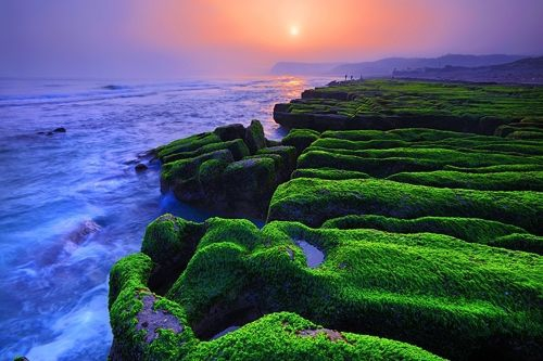 Laomei Algal Reef /Photo courtesy of Taiwan Tourism Bureau
