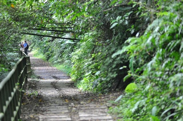Hiking Trail near Taipei / Photo by Flickr / King.F