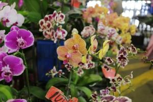 Jianguo Holiday Flower Market