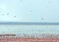 Lake Mayanara (Credit: Lizzie Halloran