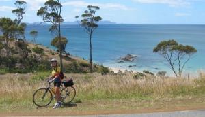 Pedaltours Tasmania