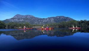 Roaring 40's Ocean Kayaking
