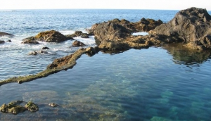 Take to the rock pools
